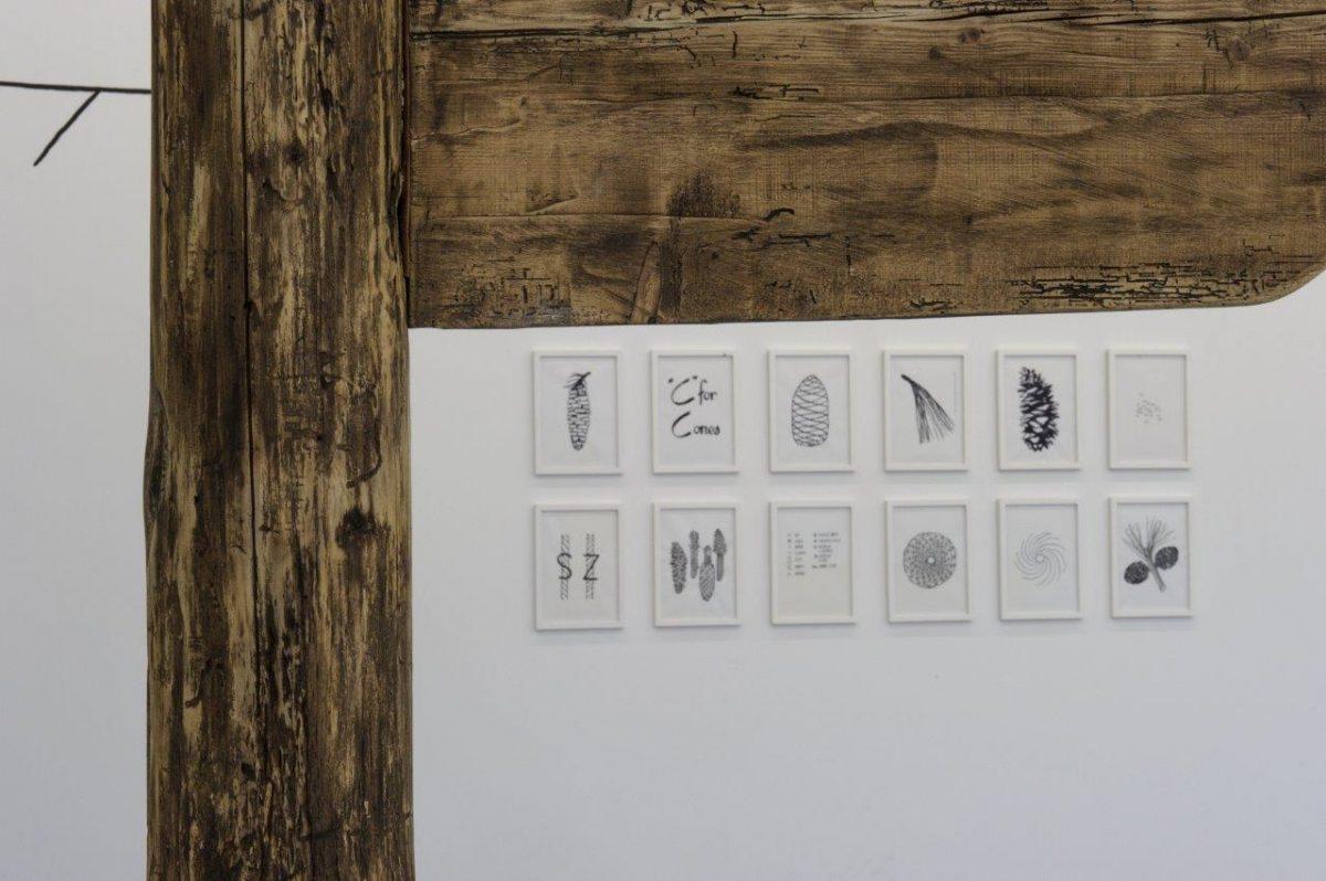 Vue-exposition-Camp-Catalogue-credit-La-Kunsthalle-2